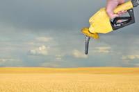 Biofuel Professionals Endorse Global Green Biofuel Standard