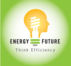 Physicists Urge Energy Efficiency as Top Priority