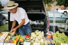Local food and sustainability