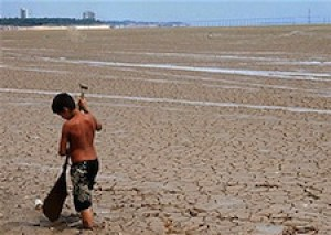 Will droughts in the Amazon turn the region from a carbon sponge into a carbon emitter?