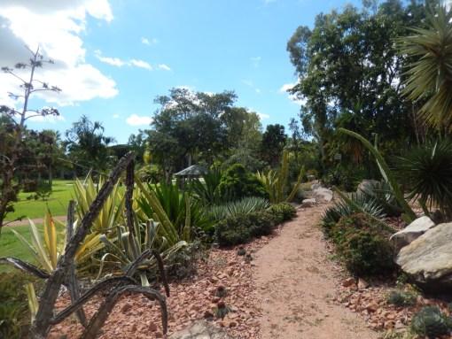 Townsville - Jardin botanique