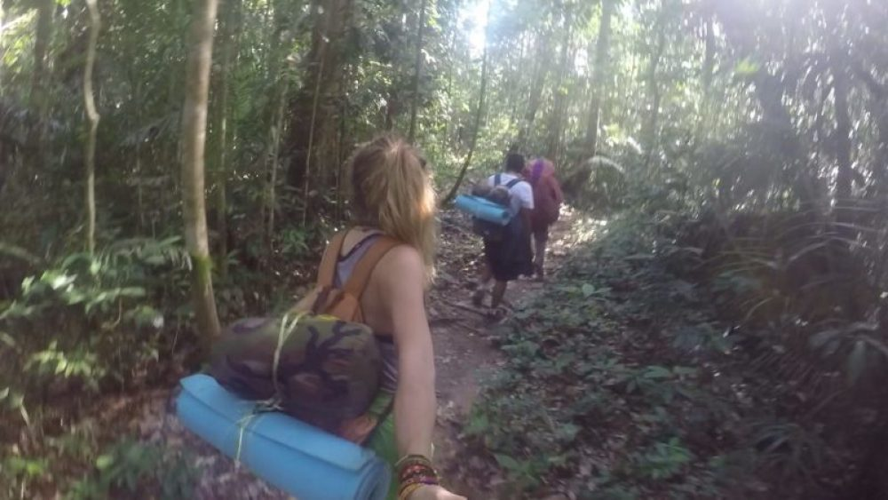 Trekking in Taman Negara, Malaysia
