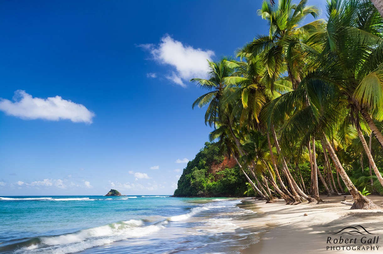 visa free countries for nigeria dominica