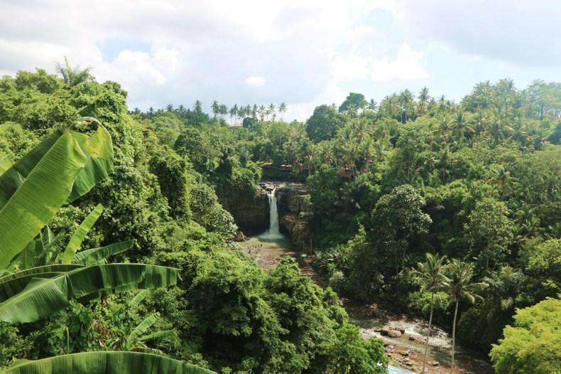 wat te doen op Bali - wat te doen in Ubud