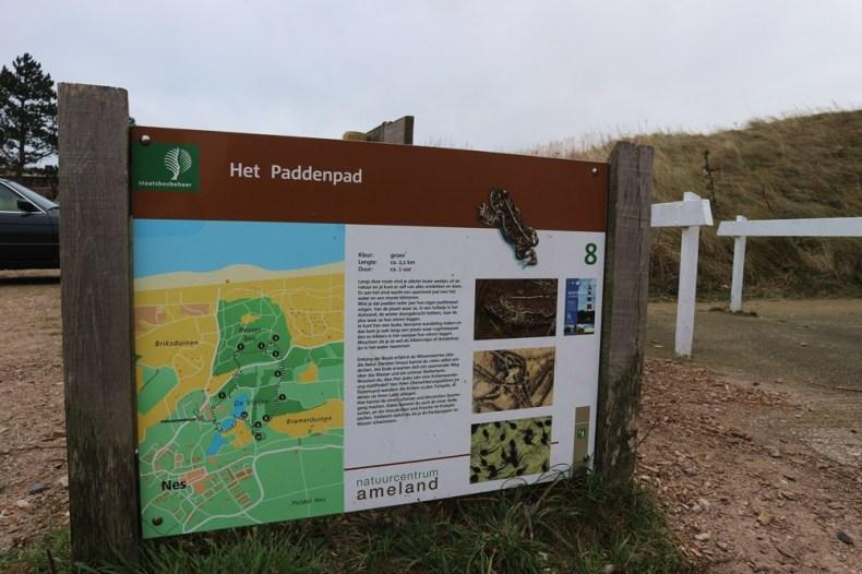 paddenpad op Ameland