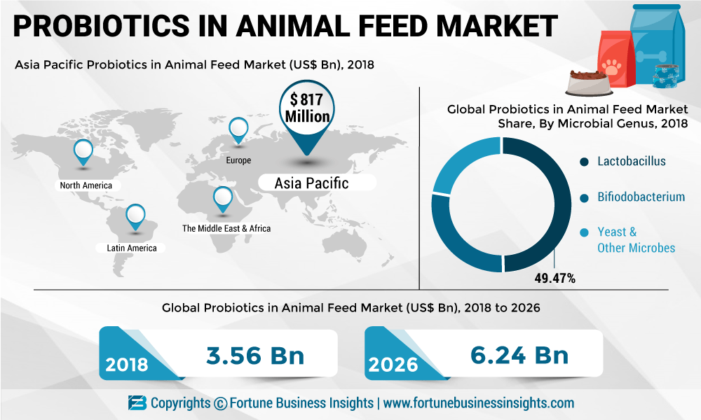 Probiotics In Animal Feed Market To Reach Us 6 24 Bn By