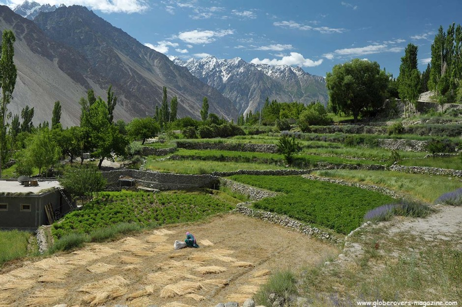 Gulmit Village in the Upper Hunza Valley north of the Attabad Lake, Hunza Vallay, PAKISTAN