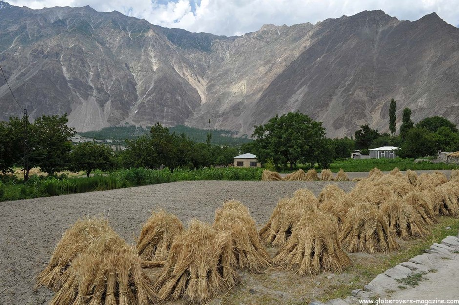 Minapin Village, Hunza Vallay, PAKISTAN