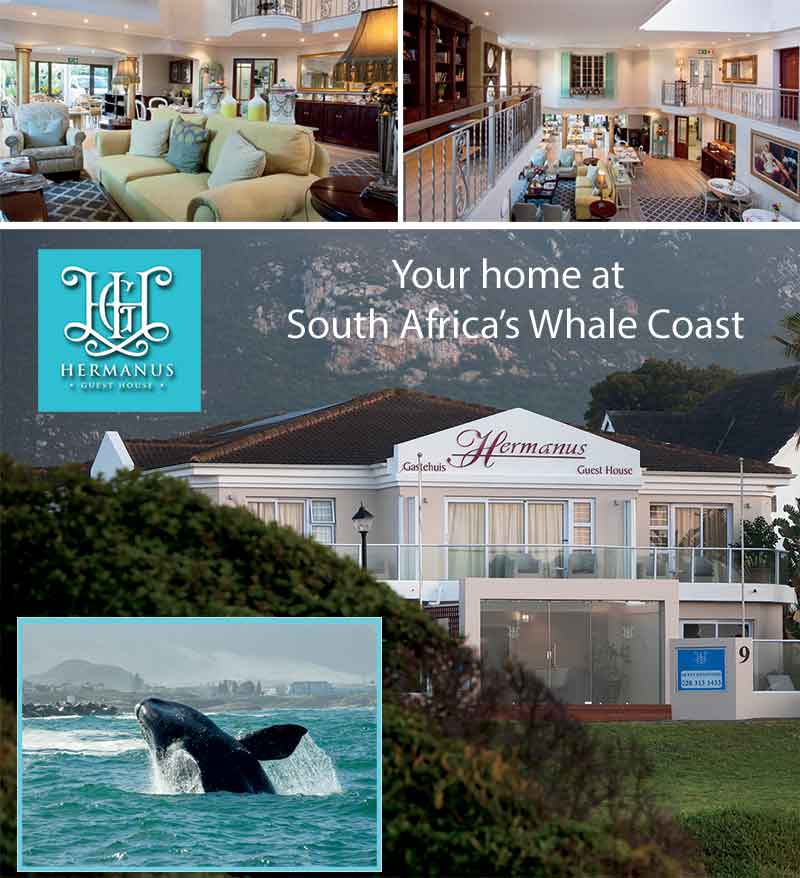 hermanus guesthouse south africa