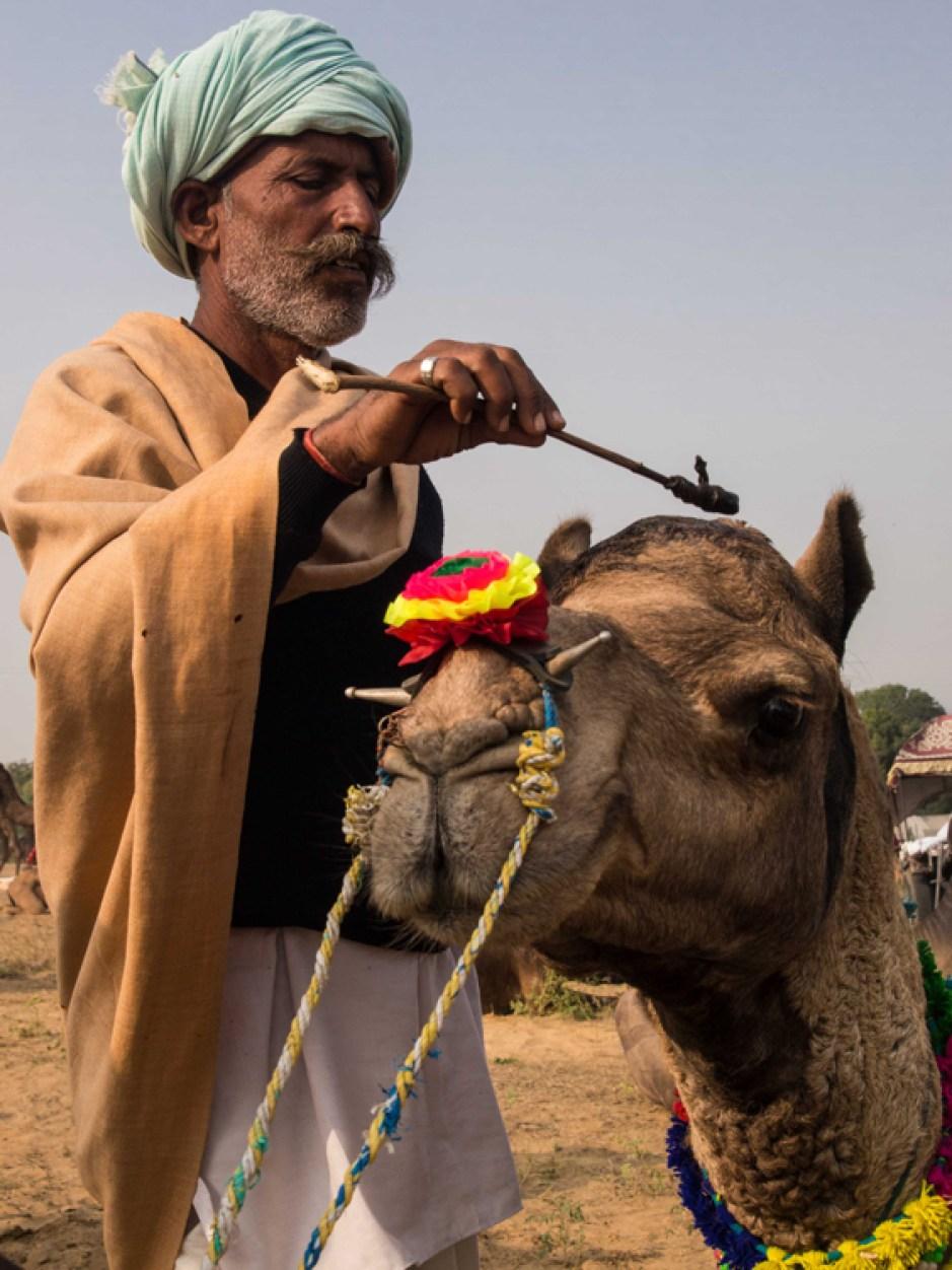 Pushkar Kamelmesse Indien-19