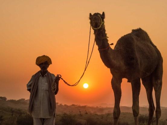Pushkar Kamelmesse Indien-5