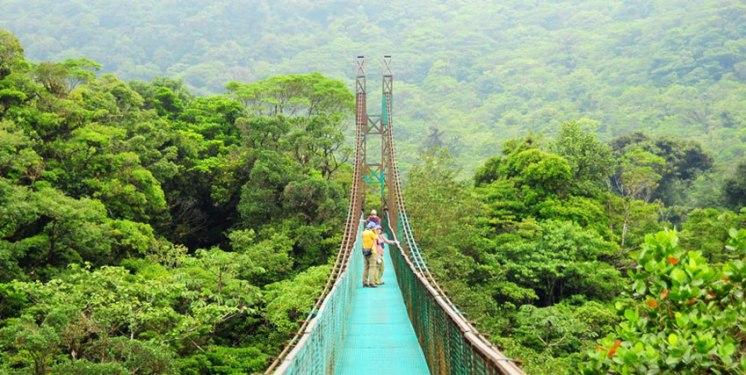 Monteverde-Nebelwald-Costa-Rica