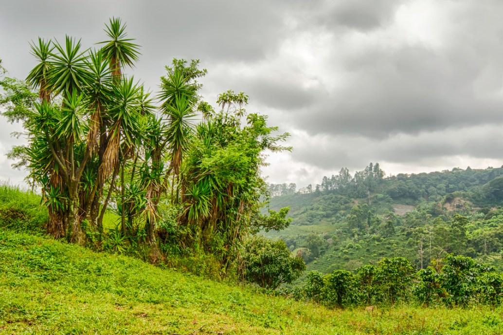 Costa-Rica-Reisen-Schweizer-Botschaft