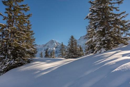 Schneeschuhwandern Mürren Travelita