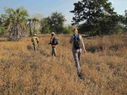 Roadtrip-Mozambique-Afrika