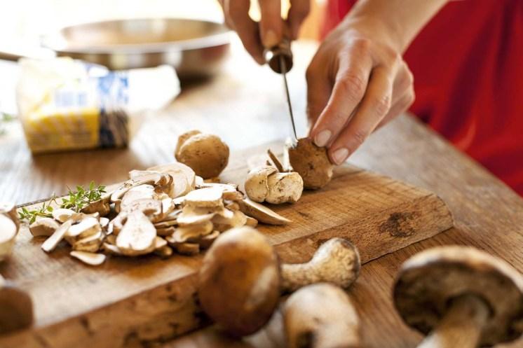 Hochleger-Pilze