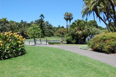 Sydney-Botanischer-Garten-Gruenflaeche