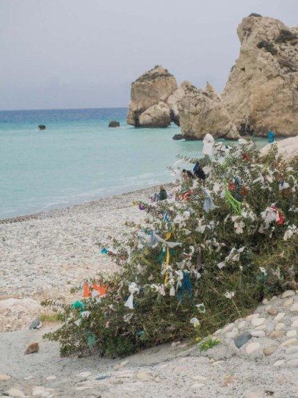 Top-10-Zypern-Restaurants-Sehenswuerdigkeiten14