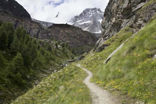 Der Weg hoch zur Trifthütte