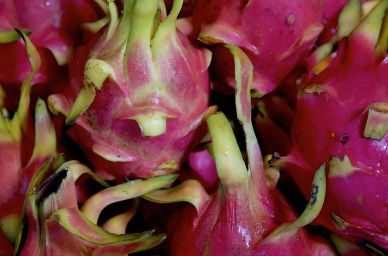 food-manila-dragon-fruit