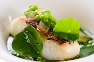 gallery-vask-manila-gourmet-restaurant
