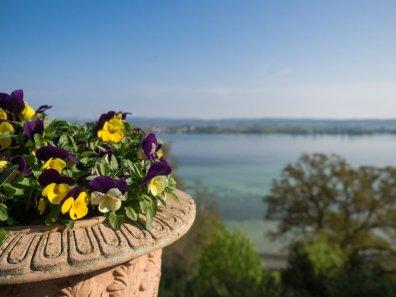 Die Aussicht über den Bodensee