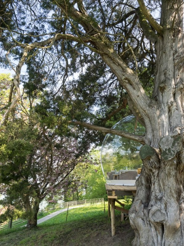 Himmelbett unter dem Baum
