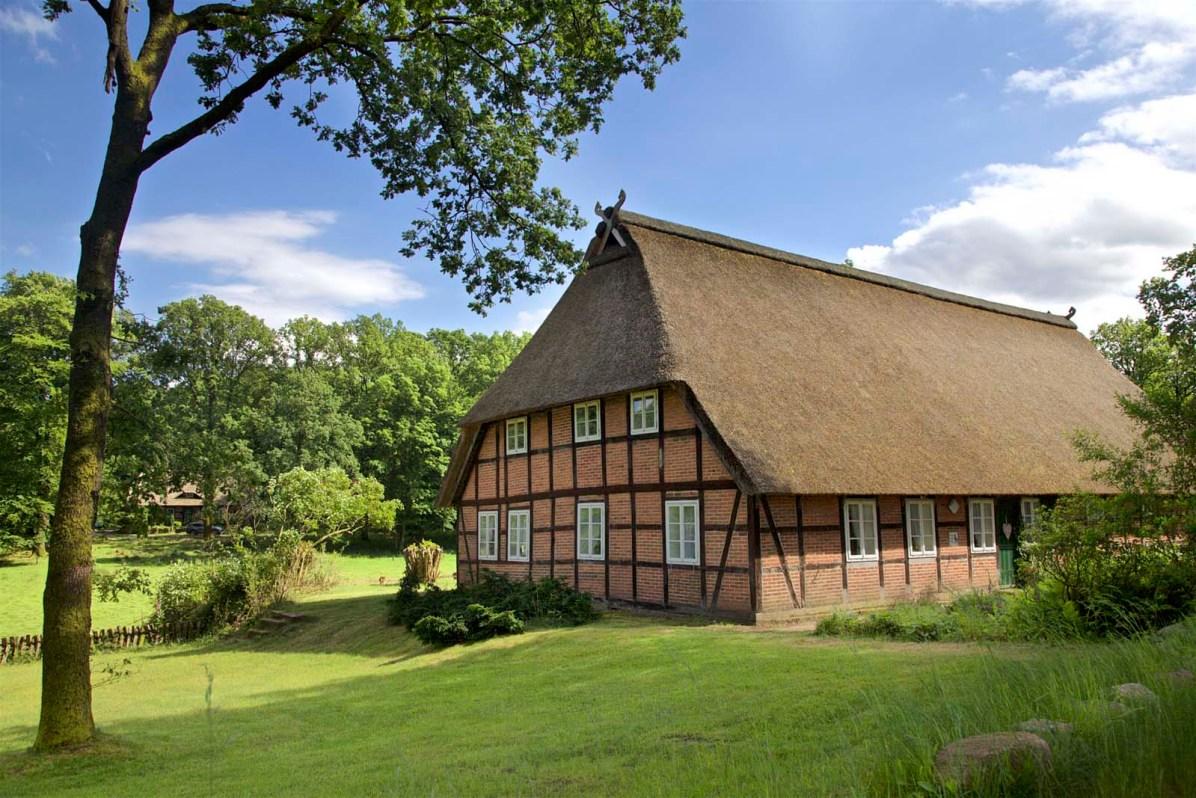 Lueneburger Heide Bluetenzeit 09