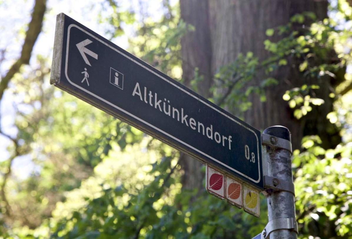 Uckermark Grumsiner Wald unesco weltnaturerbe 54