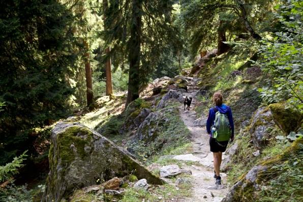 Fernwanderung Schweiz Via Bregaglia 31