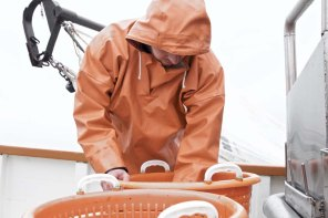 Die Nordsee Krabbenfischerei 11