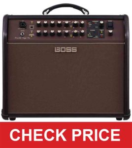 Boss Acoustic Singer Amp
