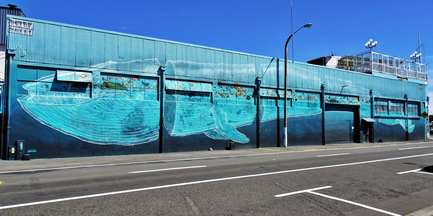 Artivism with 'Sea Walls': How Global Street Art Can Protect Our Oceans
