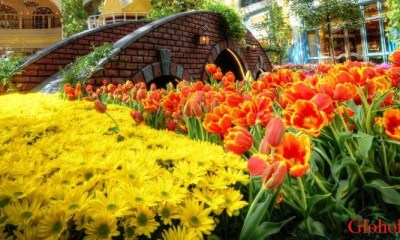 Beautiful-Bellagio-Flowers-Las-Vegas-USA