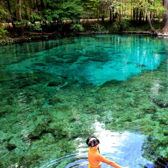 Ginnie Springs, Florida, USA