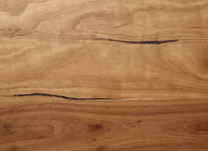 Blackbutt  Eucalyptus Campanulata  Gloria Timber Flooring