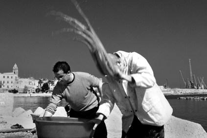 Bari, Pescatori di polpi