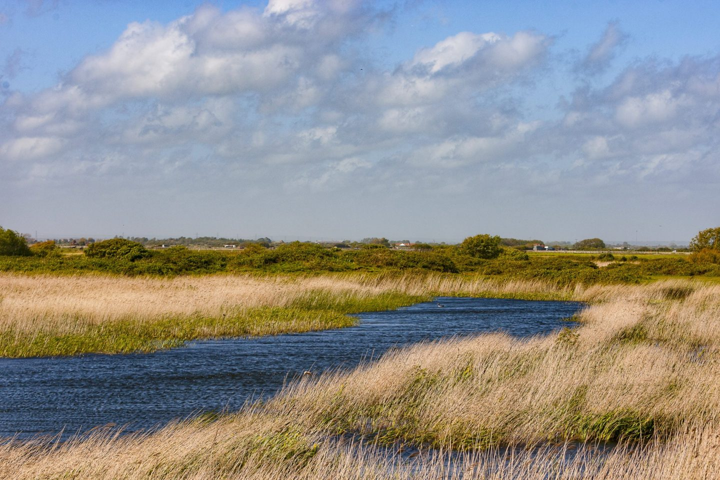 UK travel: Dungeness Nature Reserve