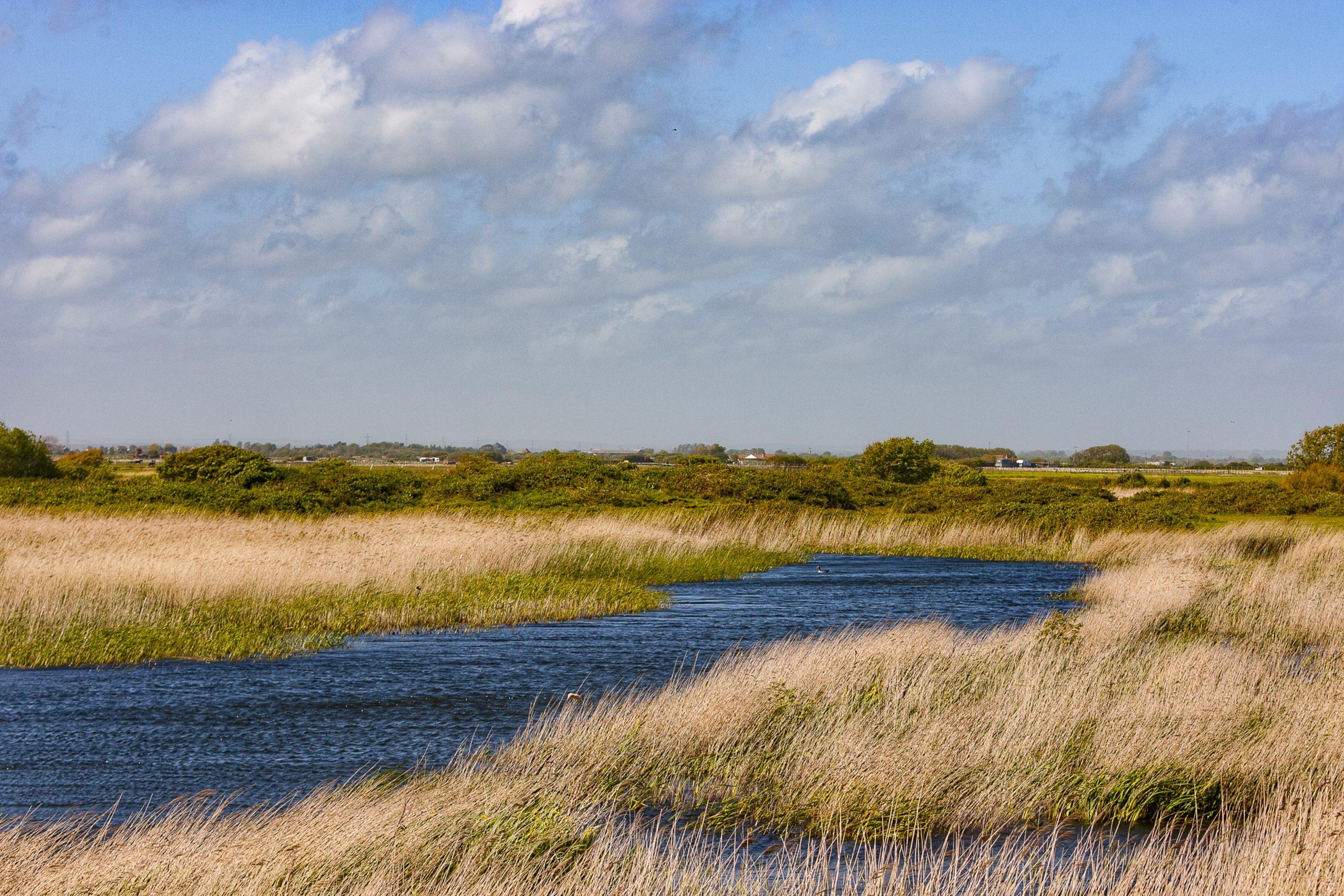 UK travel: Dungeness Nature Reserve