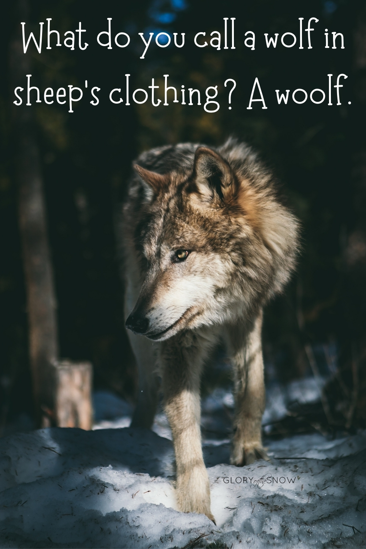 best wolf puns