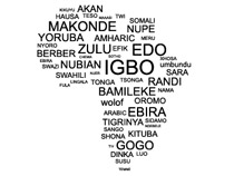 From Amharic to Zulu, bogus to zombie: the languages and