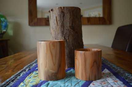 Yew pots
