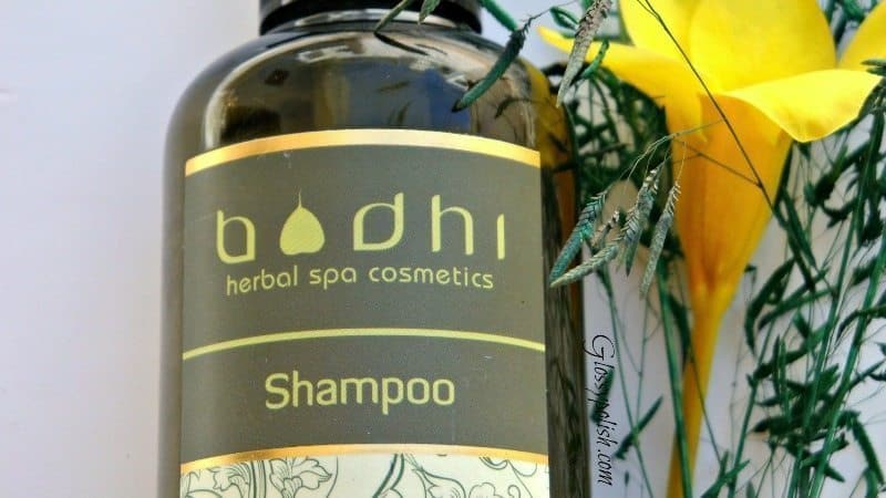 Bodhi Rosemary Mint Shampoo Review 5