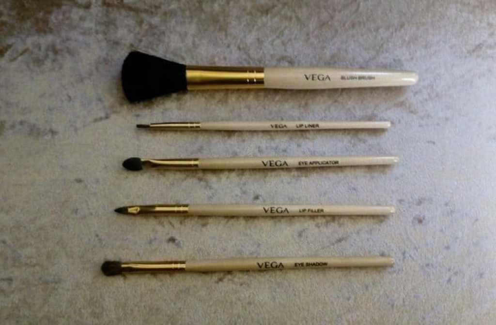 VEGA Makeup Brush Set