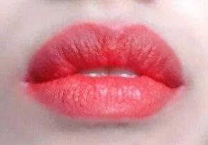 Karity 10 Creamy Lip Palette Review  10