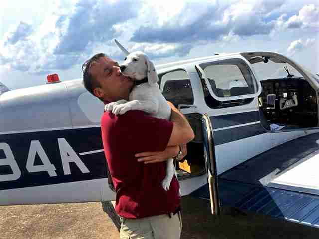 THE ULTIMATE 'FUR' OF FLYING – THE 'INTERNATIONAL RESCUE' OF ANIMALS