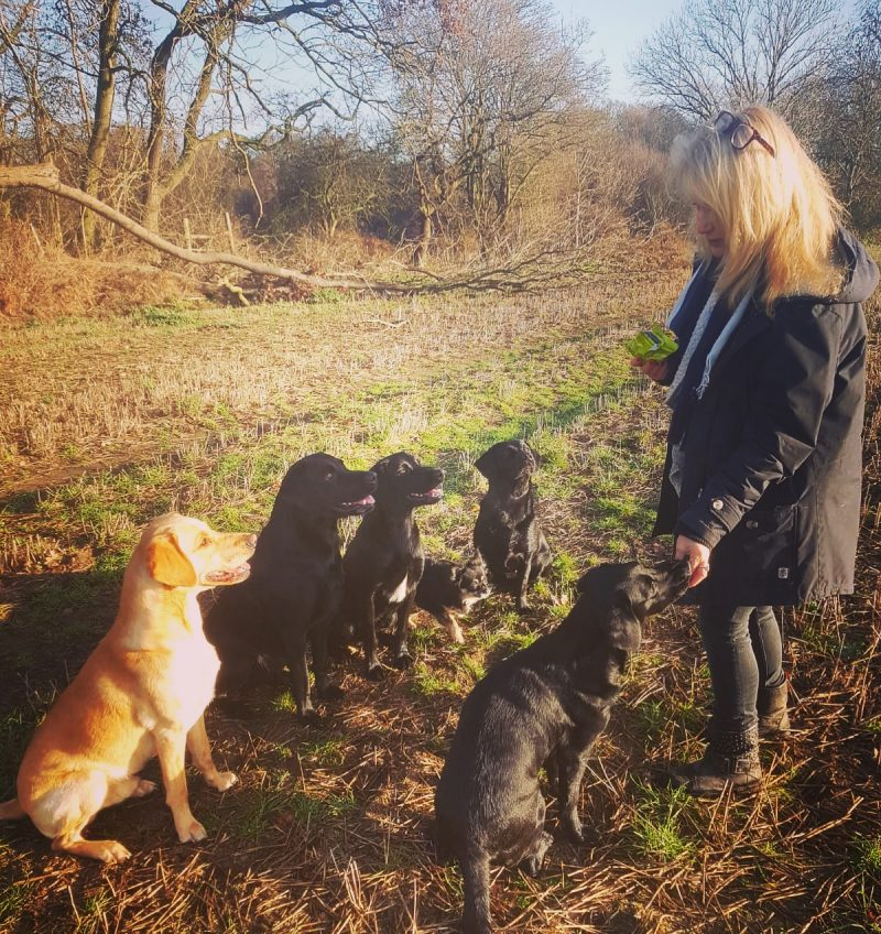 SLEEPING WITH DOGS IS GOOD FOR YOUR HEALTH – DEBBIE ARNOLD IS WALKING PROOF