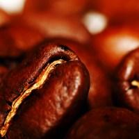 Kaffeebohne_by_segovax_pixelio_low.de