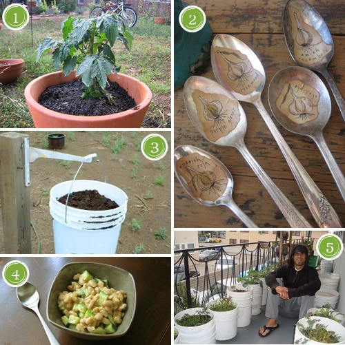 Garden Inspiration Board