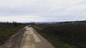 Foto Landschaft